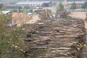 Log pile cut down for bioenergy