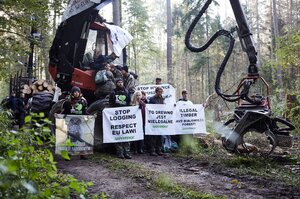 Friends of Earth protest against deforestation