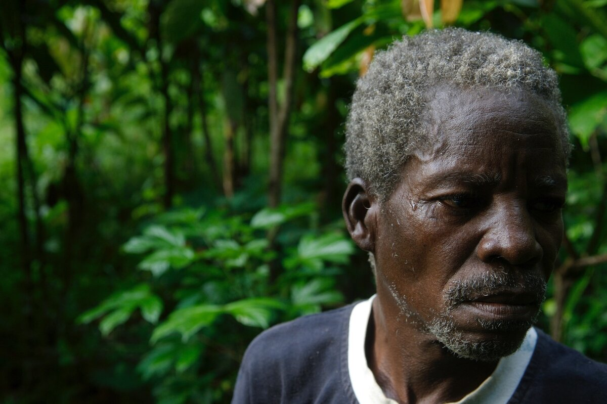 Old African man in the forest